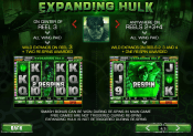 'The Incredible Hulk' by 'Playtech'. Click the image to enlarge.