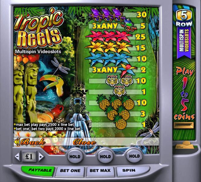 Play Tropic Reels Slots Online at Casino.com NZ