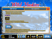 'WILD HUSKIES' by 'Bally Interactive'. Click the image to enlarge.