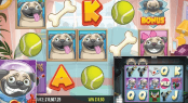 'Pugs Life' by 'PearFiction Studios'. Click the image to enlarge.
