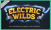 'Electric Wilds' by 'Northern Lights Gaming'. Click the image to enlarge.